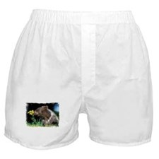 BROWN BEAR AND FLOWER Boxer Shorts