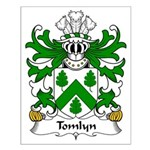 Tomlyn Family Crest Small Poster