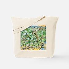 Cute Cartoon map of orlando florida Tote Bag