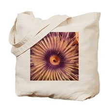 Christmas Tree Worm Tote Bag