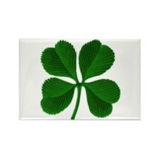 Luck of the Irish Four Leaf Clover Rectangle Magne