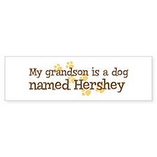 Grandson named Hershey Bumper Bumper Bumper Sticker