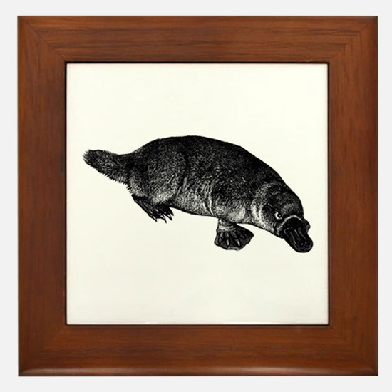 Platypus Framed Tile