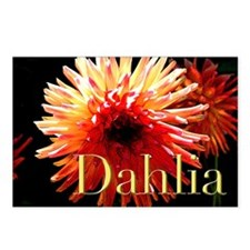 RED AND BLACK DAHLIA Postcards (Package