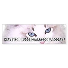 Have You Hugged A Ragdoll Today? Bumper Bumper Sticker