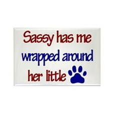 Sassy - Has Me Wrapped Around Rectangle Magnet