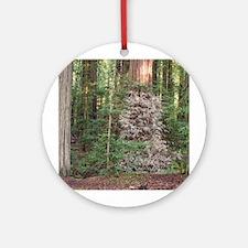 Albino Redwood Ornament (Round)