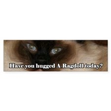 Have You Hugged A Ragdoll Bumper Bumper Sticker
