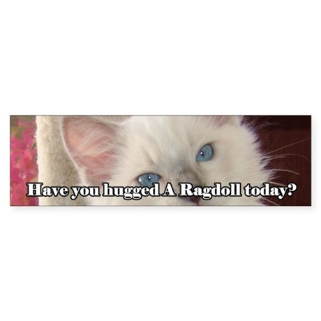 Have You Hugged A Ragdoll Bumper Sticker