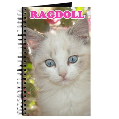 Ragdoll Kitten Journal
