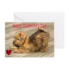 Norfolk Terrier Puppy Love Greeting Card