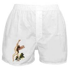 Rustle In The Ivy Faerie Boxer Shorts