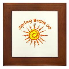 Spring Break 2008 Framed Tile