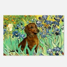 Irises & Dachshund (#1) Postcards (Package of 8)