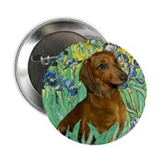 Irises & Dachshund (#1) Button