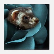Cute Ferrets Tile Coaster