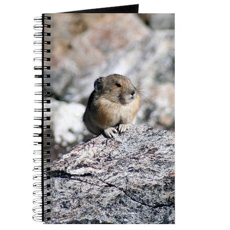Rodent Journal