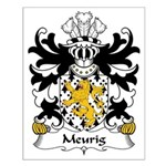 Meurig Family Crest Small Poster