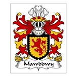 Mawddwy Family Crest Small Poster
