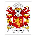Maredudd Family Crest Small Poster