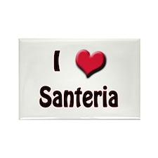 I Love (Heart) Santeria Rectangle Magnet