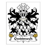 Gwdinwch Family Crest Small Poster