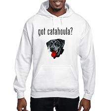 Catahoula Leopard Dog Hoodie