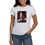 Accolade / 3 Shelties Women's T-Shirt