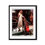 Accolade / 3 Shelties Framed Panel Print