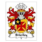 Brierley Family Crest Small Poster