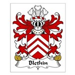 Blethin Family Crest Small Poster