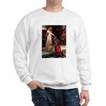 Accolade / Viszla Sweatshirt