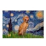 Starry Night / Vizsla Postcards (Package of 8)