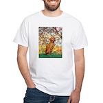 Spring / Vizsla White T-Shirt