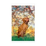 Spring / Vizsla Sticker (Rectangle)