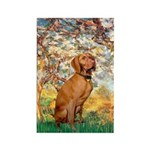 Spring / Vizsla Rectangle Magnet (10 pack)