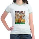 Spring / Vizsla Jr. Ringer T-Shirt