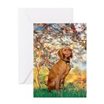Spring / Vizsla Greeting Card