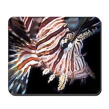 Lion Fish Mousepad