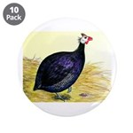 Royal Purple Guineafowl 3.5