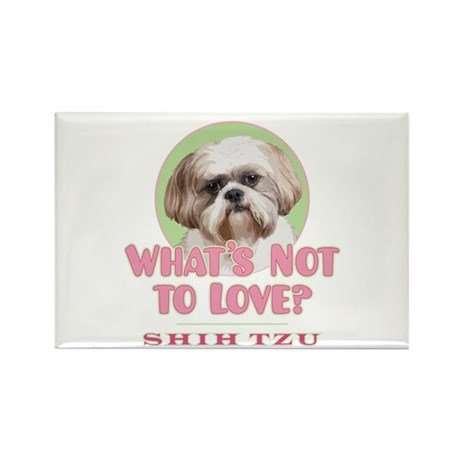 What's Not to Love? - Rectangle Magnet