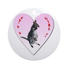 Joey in Pouch, It's a Girl! Ornament (Round)
