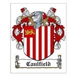 Caulfield Family Crest Small Poster