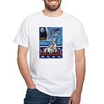 CANAAN DOG art White T-Shirt