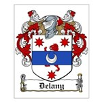 Delany Family Crest Small Poster