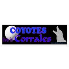 Coyote Bumper Bumper Sticker