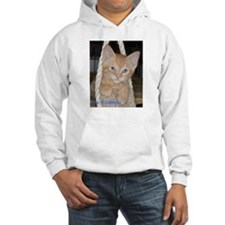 Cats Haven Rescue 1091 Hoodie