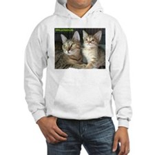 Cats Haven Rescue 1072 Hoodie
