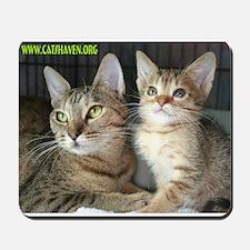 Cats Haven Rescue 1072 Mousepad
