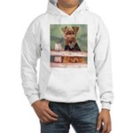 Hooded Sweatshirt Airdale